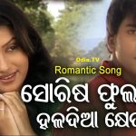 Sorisa Phulara Haladia Kheta Odia Song Mp3 Download